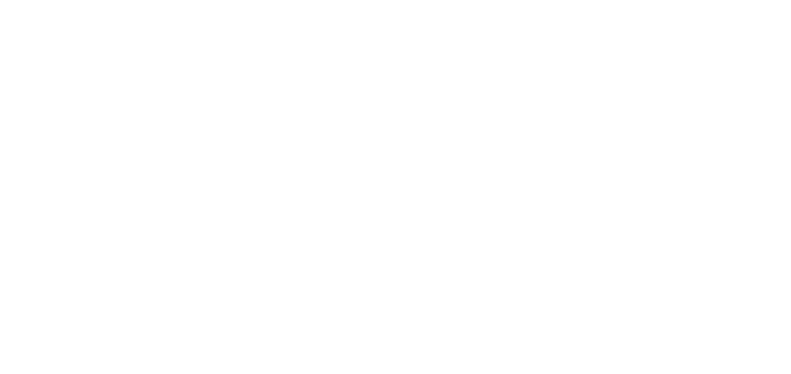 Wilderness Village Resort